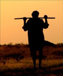 2154-shepherd-silhouette-220w-tn-jpg